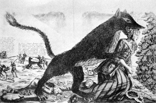 Wolf attackiert Mensch